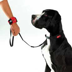 PatentoPet Hands Free Leash Black